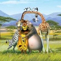 Madagascar love story